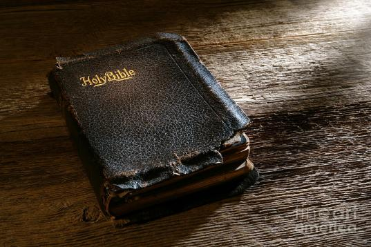 old-holy-bible-olivier-le-queinec